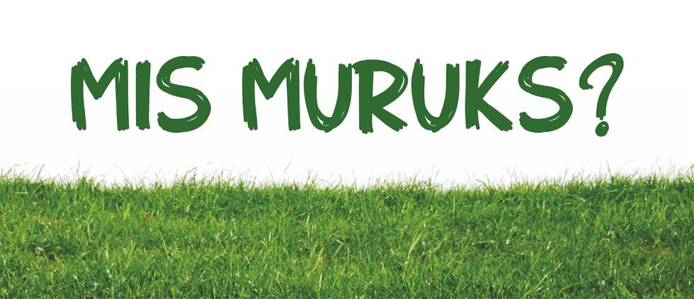Mis_muruks_banner1_980X422